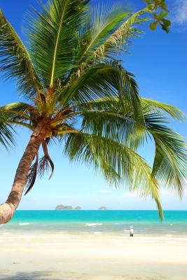 Auf Urlaub mit Grünen Smoothies